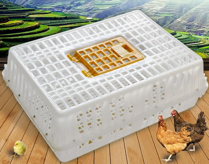 南宁鸡鸭运输笼厂家直销价格实惠!